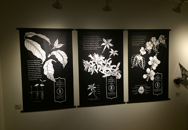 Botanical Plate Series at Starbucks Corporate offices, SODO Seattle.