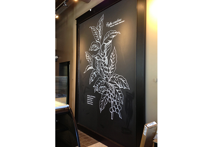 Botanical Illustration and Pike and Broadway Starbucks Café, Chalk pen.