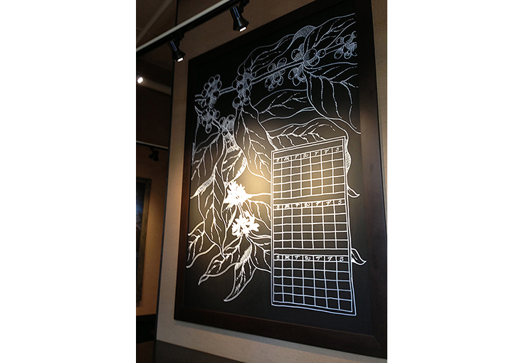 Botanical Illustration and Pioneer Square Starbucks Café, Chalk pen.